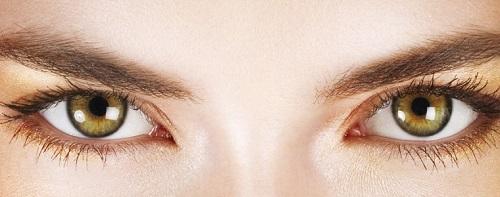 Great Eyesight