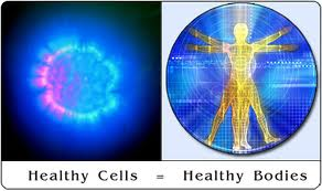 Healthy Cells Healthy Bodies